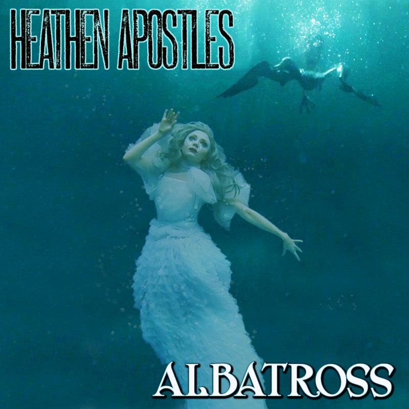 Albatross cover